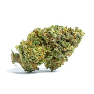 Buy Tangie Burn OG weed Strain UK