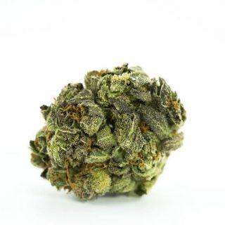 Buy Bio Diesel Marijuana strain UK