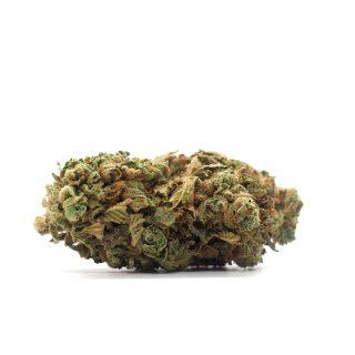 Buy Gelato weed strain UK