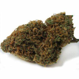 Buy Hindu Kush weed Strain uk
