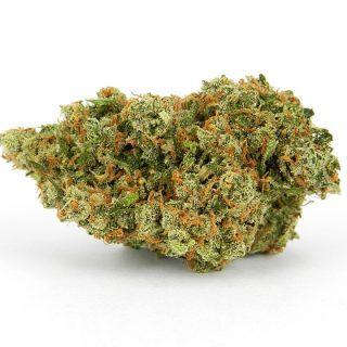 Buy Jack Herer Medical Weed Strain UK