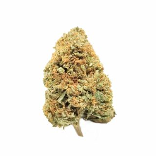 Buy Jedi Kush Cannabis Strain UK