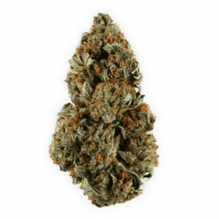 Buy Purple Kush Weed Strain UK