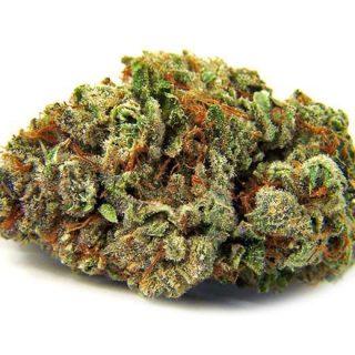 Buy hybrid weed strains online UK