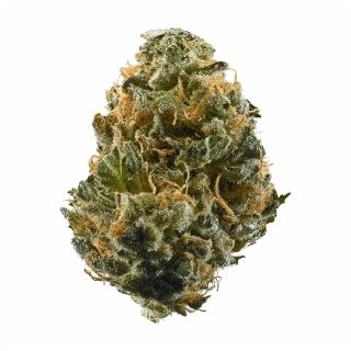 Mail Order Blaze Weed Strain UK