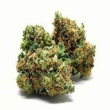 Buy Orange Kush Weed Strain UK