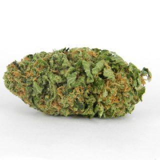 Buy Northern Lights Weed Strain UK