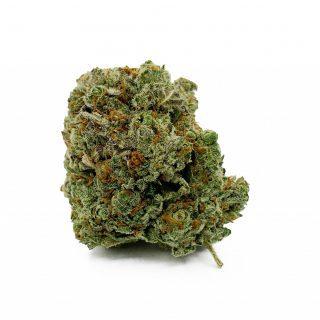 Buy The Dutchess Weed Strain UK