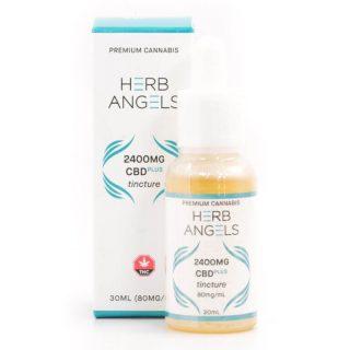 Buy Herb Angels CBD Plus Tincture 2400mg