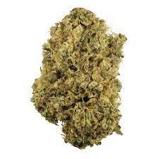 Durban Poison Marijuana Strain UK