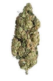 Super Sour Diesel Marijuana Strain UK