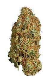 Super Jack Cannabis Strain UK