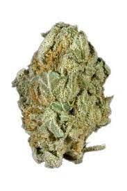 Buy Full Moon Marijuana Strain UK