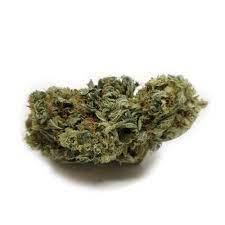 Buy Pine OG Marijuana Strain UK