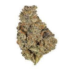 Kush Mint Marijuana Strain Truro
