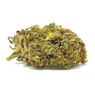Tangie Marijuana Strain Bristol