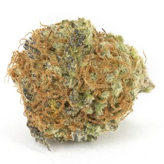 Space Queen Weed Strain Oxford