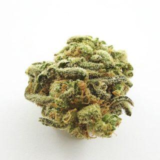 Sour Haze Weed Strain UK